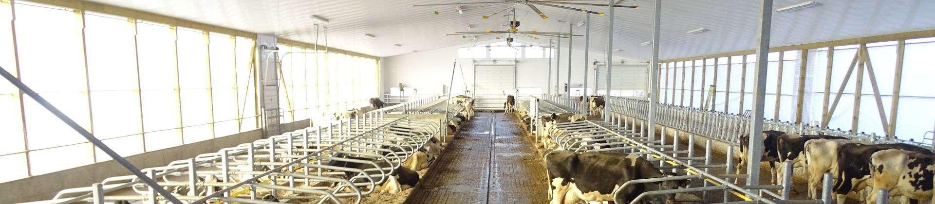 panel para granjas reforzado con poliéster y fibra de vidrio